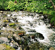 rocky stream by Amber Hathaway