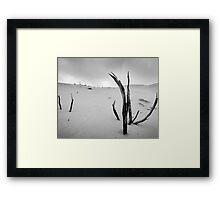 Dune 1 Framed Print