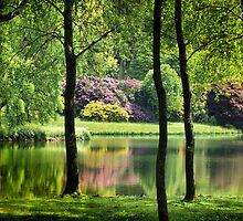 Stourton House Spring Reflection by saxonfenken