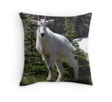 Goat stare Throw Pillow