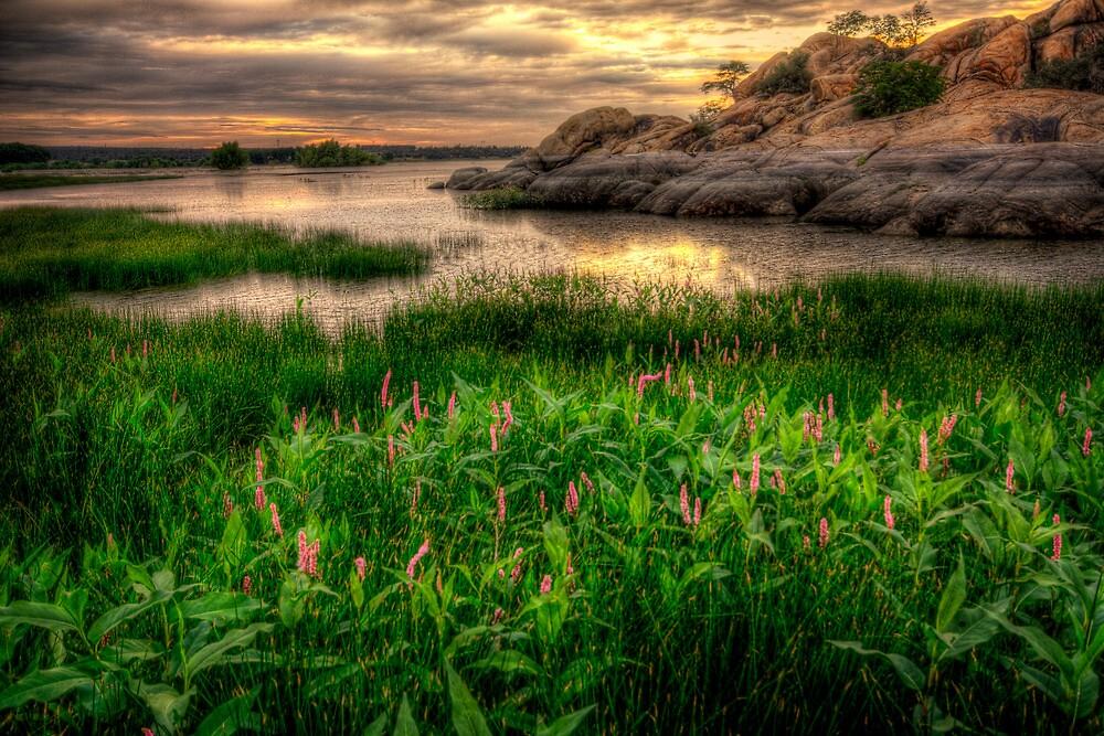 Feeling Pink by Bob Larson
