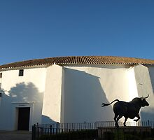 Plaza de Toros de Ronda by guetto