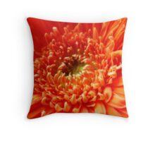 Orange Gerbera ~ The Orton Effect ~ Throw Pillow
