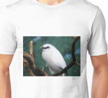 Rothschild Mynah... Unisex T-Shirt