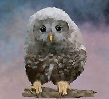 Owlet by Bamalam Art and Photography