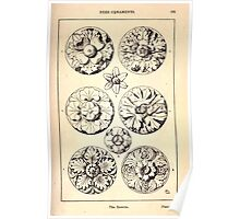 A Handbook Of Ornament With Three Hundred Plates Franz Sales Meyer 1896 0199 Free Ornaments Rosette Poster