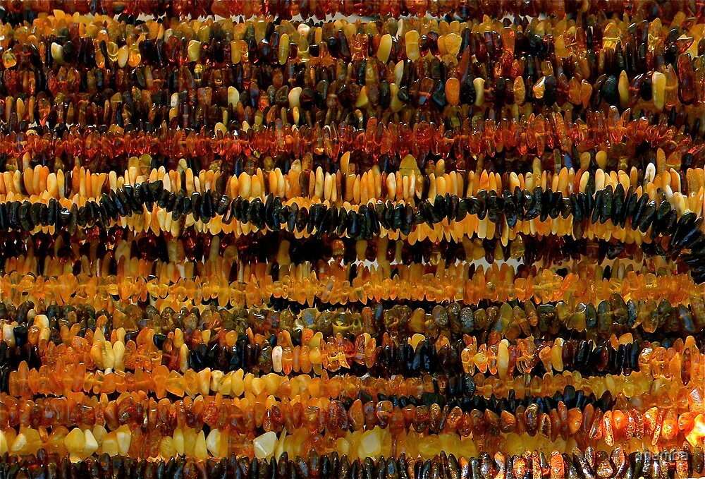 the beauty of amber by mamba
