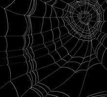 Lazy Spider's Web by LifeHasStarted