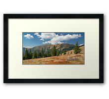 Carpathian Mountains in sunny day Framed Print