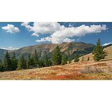Carpathian Mountains in sunny day Photographic Print