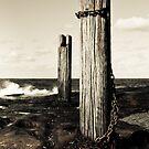 Wooden pole by the sea by Jesper Høgsdal