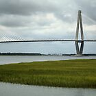 Beauty of Patriots Point  by Intheraine