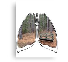 Lungs - National Park Bench Canvas Print