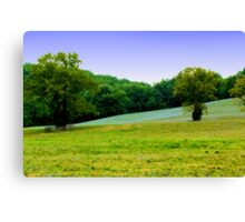 The field before the woods... Canvas Print