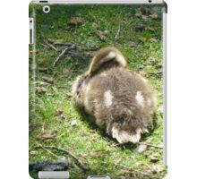 Sleeping Duckling iPad Case/Skin