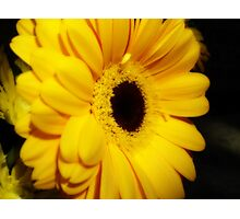 Yellow Gerbera ~ The Orton Effect ~ Photographic Print