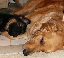 Sibling Love by vjmarro
