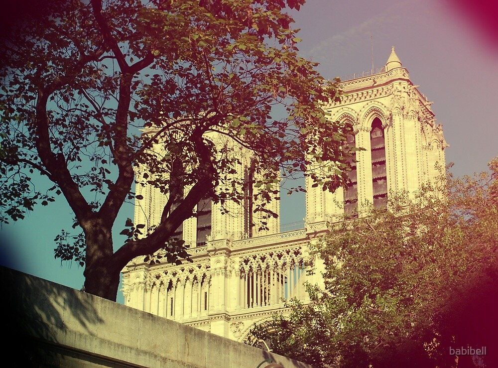 Notre Dame by babibell