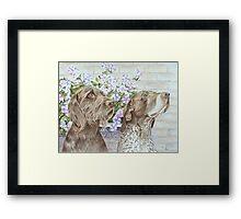 Dogs, Doug and Josh with Petunias Framed Print