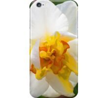 Daffy iPhone Case/Skin