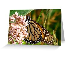 Dots and Stripes Greeting Card