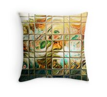 Abstract - Through Glass Throw Pillow