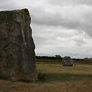 Stones at Avebury. by kissuquick