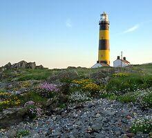 St John's Lighthouse 2 by MarcoBell