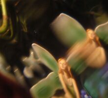 Fairy Lily Pad, Abstract Photography, Raw Image, Refraction through Glass by Hectagon