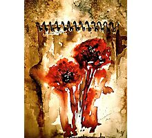 The Poppy Journals.. Photographic Print