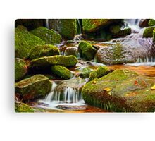 MOSSY ROCKS AND MOUNTAIN STREAM Canvas Print