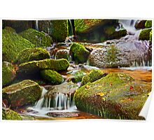 MOSSY ROCKS AND MOUNTAIN STREAM Poster