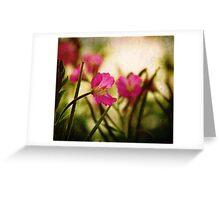 Textured Bokeh Greeting Card