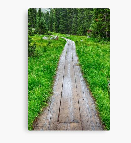 Wooden Forest Path Canvas Print