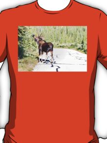 Bull Moose Munching in The Road T-Shirt
