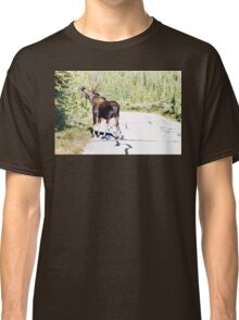 Bull Moose Munching in The Road Classic T-Shirt