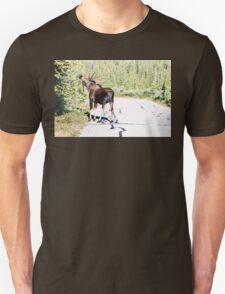 Bull Moose Munching in The Road T-Shirt