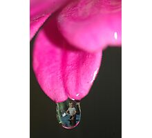 Lost in a Drop of Time Photographic Print