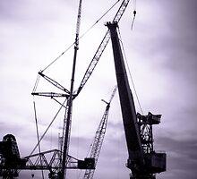 Swan Hunters Cranes by DeePhoto