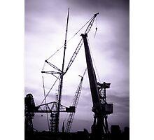Swan Hunters Cranes Photographic Print