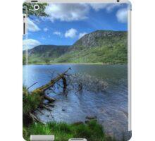 The Fallen Tree iPad Case/Skin