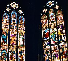 Strasbourg Cathedral Stained Glass by David Davies