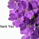 Purple Flower Thank You by Sheryl Kasper