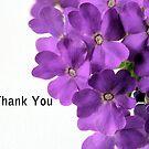 Purple Flower Thank You by Sheryl Kasper