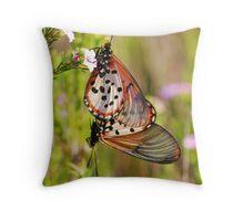 Garden Acraea Throw Pillow