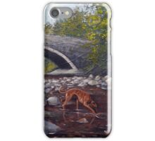 Tickle me a trout for tea.. iPhone Case/Skin