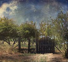 Beyond the Gate by Laurie Search