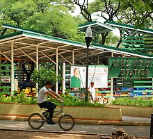 Quezon Memorial Circle bicycle station 31 by walterericsy