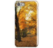 Autumn's Golden Path iPhone Case/Skin