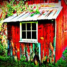 I Love Barns ~ Bronson's Red :) by Debbie Robbins